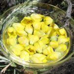 mullein-flower-essence