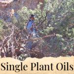 Single Plant Distillations